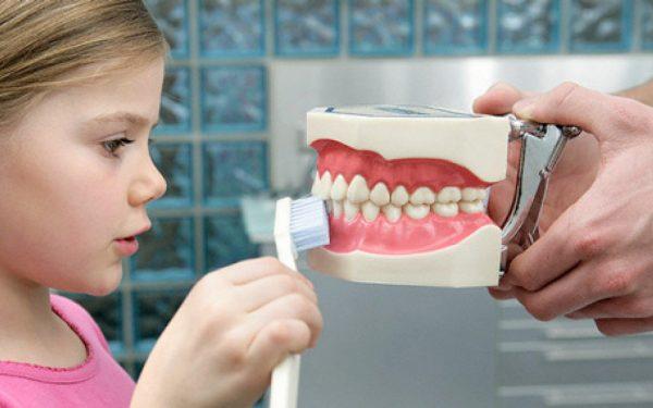 Советы опытных стоматологов, которые позволят сохранить здоровье зубов у детей